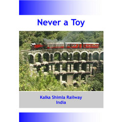 Never a Toy • DVD • 59 mins